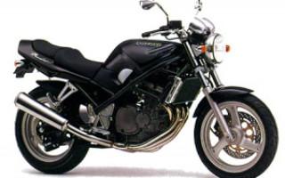 SUZUKI Bandit 250, описание модели