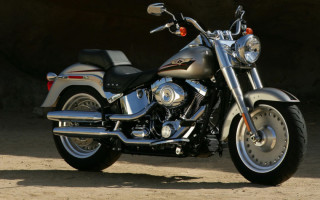 Harley Davidson flstf