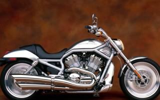 V rod Harley Davidson фото