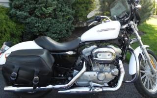 Harley Davidson sportster xl883