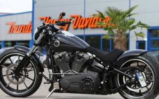 Harley Davidson кастом