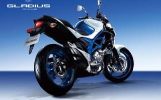 Suzuki SV 400 gladius технические характеристики
