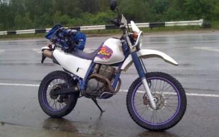 Спортивные мотоциклы 1000 кубов