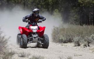 квадроцикл Хонда 250 купить